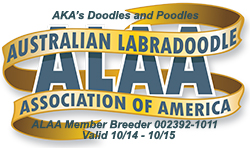 Australian Labradoodle Breeder Association Logo
